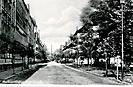 Die Albertstraße_6
